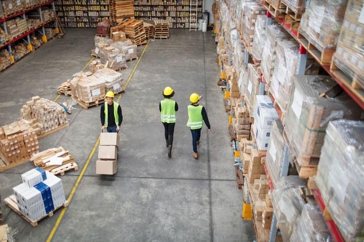 Nhân viên hiện trường xuất nhập khẩu phải thường xuyên trực tiếp tới cảng hoặc sân bay